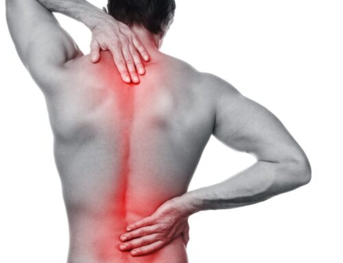 6 Tips to Improve Your Back Care